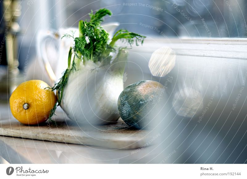 Old White Yellow Window Healthy Wait Esthetic Kitchen Fruit Authentic Plant Nutrition Transience Natural Warm-heartedness Vegetable