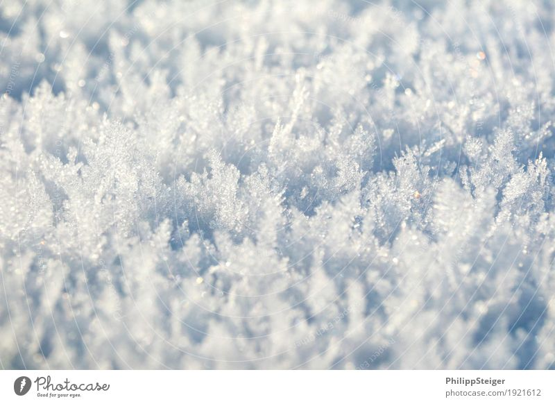 ice crystals Winter Nature Elements Water Ice Frost Snow Cold Bizarre Ground Ice crystal Frozen Colour photo Exterior shot Deserted Copy Space top