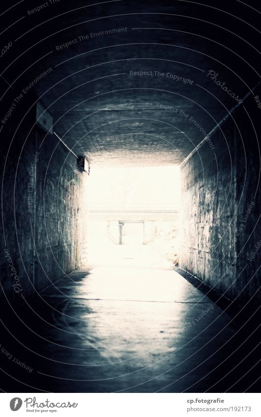 Light at the end of the tunnel Building Architecture Tunnel Street Lanes & trails Dark Free Bright Graffiti Exterior shot