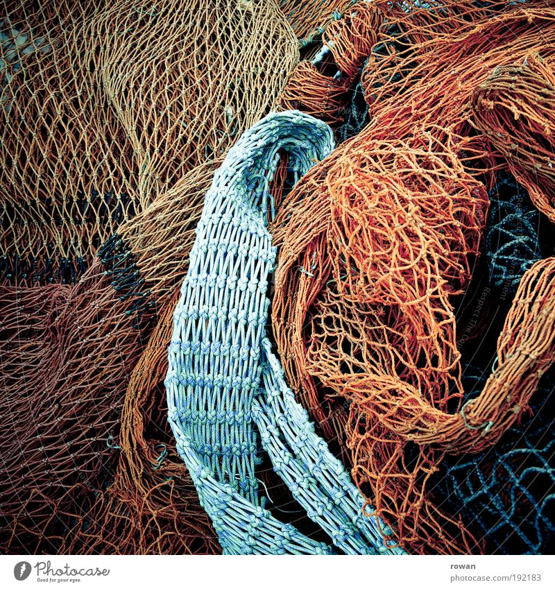 nets Coast Wet Blue Multicoloured Red Net Network Chaos Knot Node Interlaced Line Fishing (Angle) Fishery Harbour Ocean Maritime Catch Fishing net Colour photo