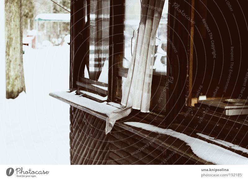 Winter House (Residential Structure) Loneliness Snow Window Broken Hut Broken Ruin Window pane Destruction