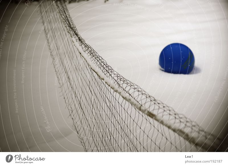 the memory of the summer Ball sports Winter Snow Freeze Cold Hope Colour photo Exterior shot Day