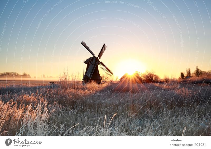 beautiful sunrise behind windmill in winter Sky Nature Blue Sun Landscape Winter Architecture Meadow Grass Building Gold Vantage point Frost Seasons Rural