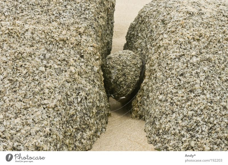 Stones and fantasy Beach Ocean France Brittany Nature Sand Coast Sphere Whimsical Sculptural Esthetic Funny Wet Crazy Gray Surprise Inspiration Art Colour photo