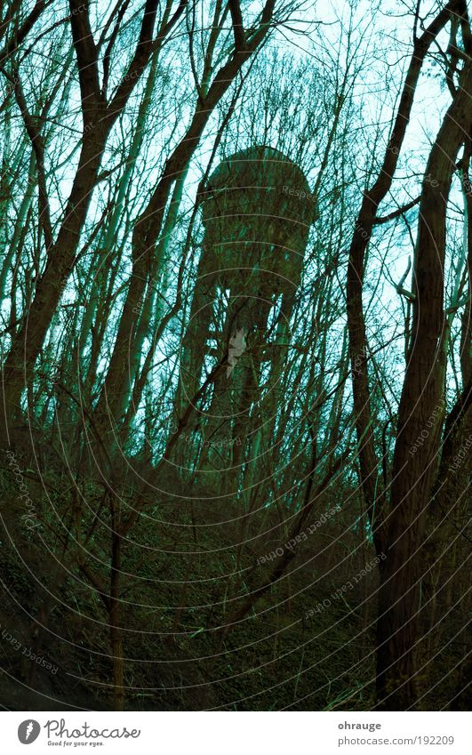 The tower Environment Nature Landscape Plant Autumn Fog Tree Park Forest Outskirts Tower Manmade structures Water tower Tourist Attraction Threat Creepy Dream