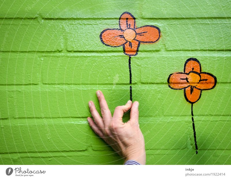 Picking flowers. Joy Leisure and hobbies Hand Flower Wall (barrier) Wall (building) Facade Stone Graffiti To hold on Funny Green Orange Happy Spring fever