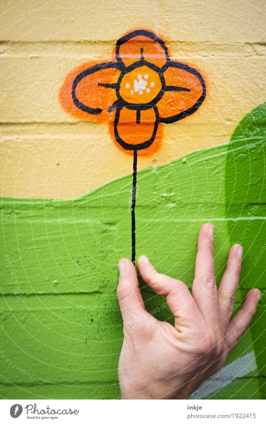 Human being Green Hand Flower Joy Yellow Wall (building) Graffiti Emotions Love Lifestyle Playing Wall (barrier) Exceptional Facade Orange
