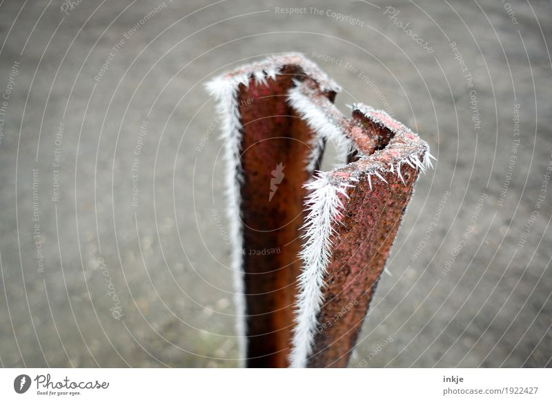 Frost on rust. Great climate. Winter Climate Ice Metal Rust Ice crystal Cold Point Thorny Frozen Colour photo Exterior shot Close-up Deserted Copy Space left
