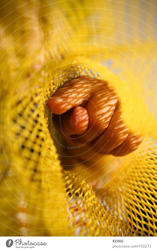 Child Hand Summer Yellow Fingers Network Net Target Education Observe Touch Curiosity Discover Kindergarten Captured Interest