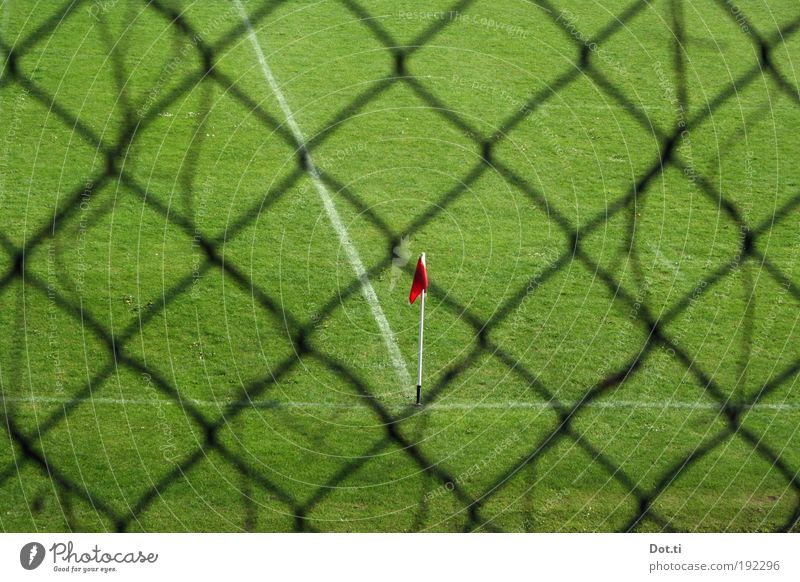 Fortuna the players go out Leisure and hobbies Sports Ball sports Sporting Complex Football pitch Meadow Green Fence Wire netting fence Flag corner flag Corner