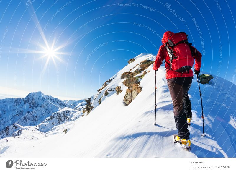 Mountaineer faces a climb at the top of a snowy peak. Human being Nature Vacation & Travel Man Blue Colour Landscape Red Loneliness Winter Mountain Adults Snow Sports Copy Space Hiking