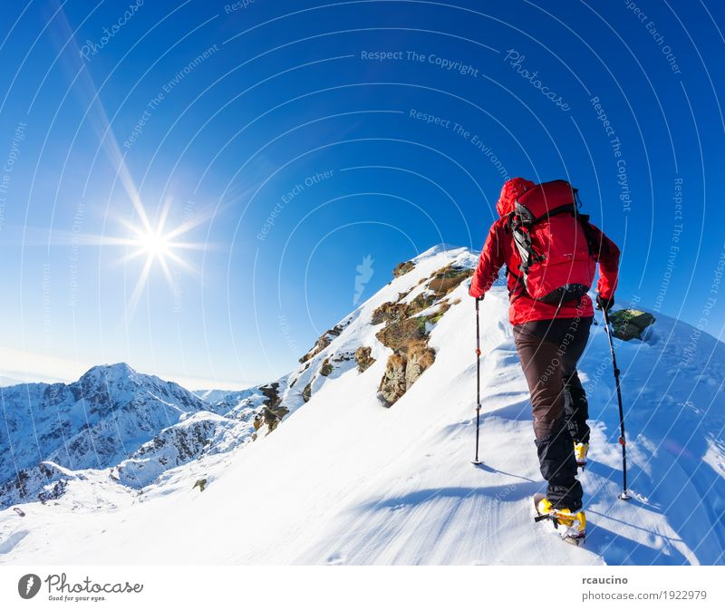 Climber at the top of a snowy peak in the Alps. Vacation & Travel Adventure Expedition Winter Snow Mountain Hiking Sports Climbing Mountaineering Success