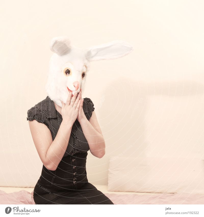 Oops, she did it again! Human being Feminine Woman Adults Animal Pet Brash Bright Smart Crazy Beautiful Black White Hare & Rabbit & Bunny Easter