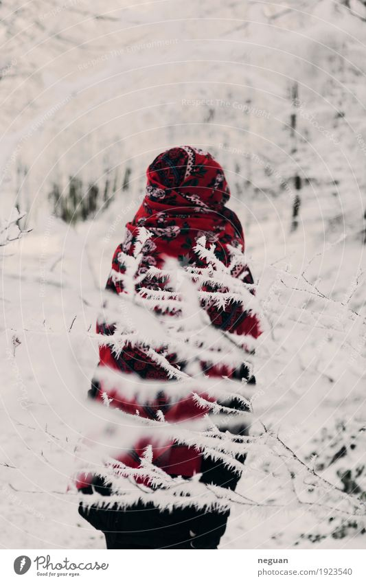 wintertime Human being Girl Body 1 Environment Nature Plant Winter Beautiful weather Ice Frost Snow Fashion Clothing Ornament Sadness Exotic Fantastic Creepy