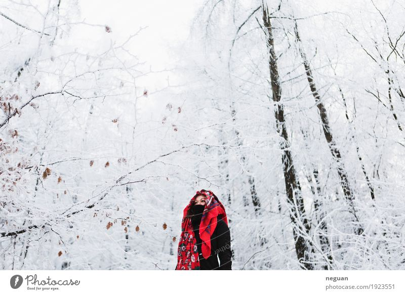 into the winter Lifestyle Style Exotic Vacation & Travel Winter Snow Human being Woman Adults Body Face Culture Cinema Nature Plant Weather Ice Frost Tree