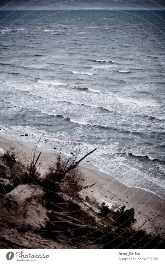 Water Blue Winter Beach Loneliness Cold Gray Sand Landscape Waves Coast Baltic Sea Cure Bad weather Ocean