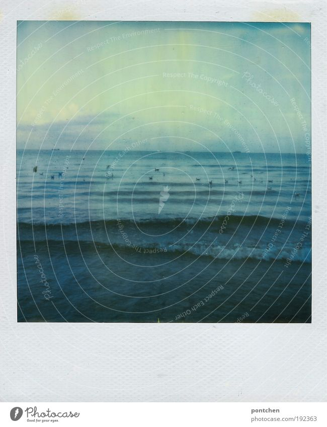 Sky Nature Blue Water Vacation & Travel Summer Ocean Far-off places Dark Freedom Coast Moody Polaroid Waves Wind Wild