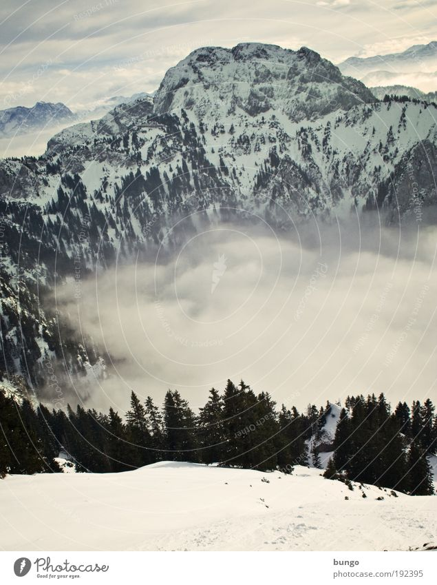 downhill Vacation & Travel Winter Snow Hiking Nature Landscape Sky Clouds Fog Tree Rock Alps Mountain Peak Relaxation Esthetic Gigantic Infinity Power Might