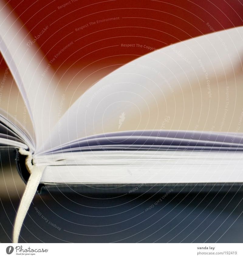 reading pleasure Art Book Library Wisdom Smart Know Bookmark Leaf Paper Page Colour photo Deserted Copy Space top Copy Space bottom Blur Shallow depth of field