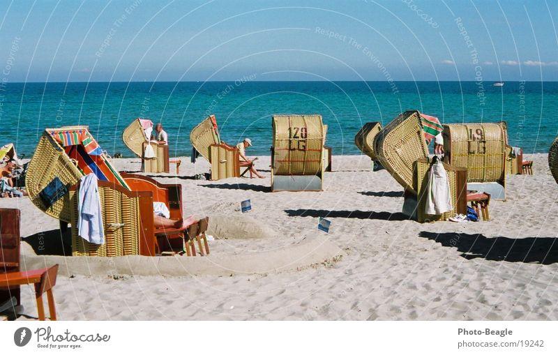Vacation & Travel Summer Ocean Beach Lake Europe Baltic Sea Beach chair Schleswig-Holstein Goof off Black-headed gull  Kellenhusen