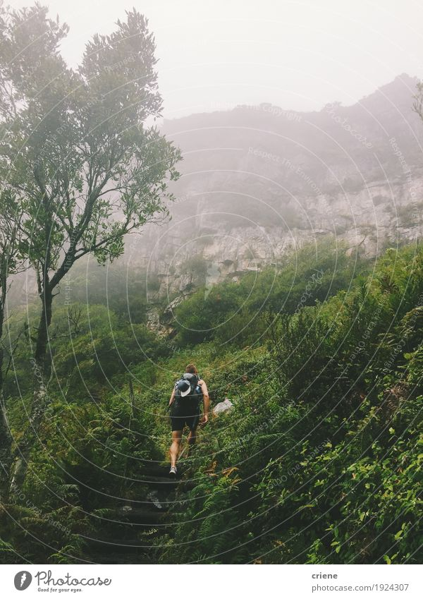Young adult male hiking green mountains Human being Nature Vacation & Travel Youth (Young adults) Man Young man Clouds Forest 18 - 30 years Mountain Adults Environment Life Lifestyle Sports Tourism
