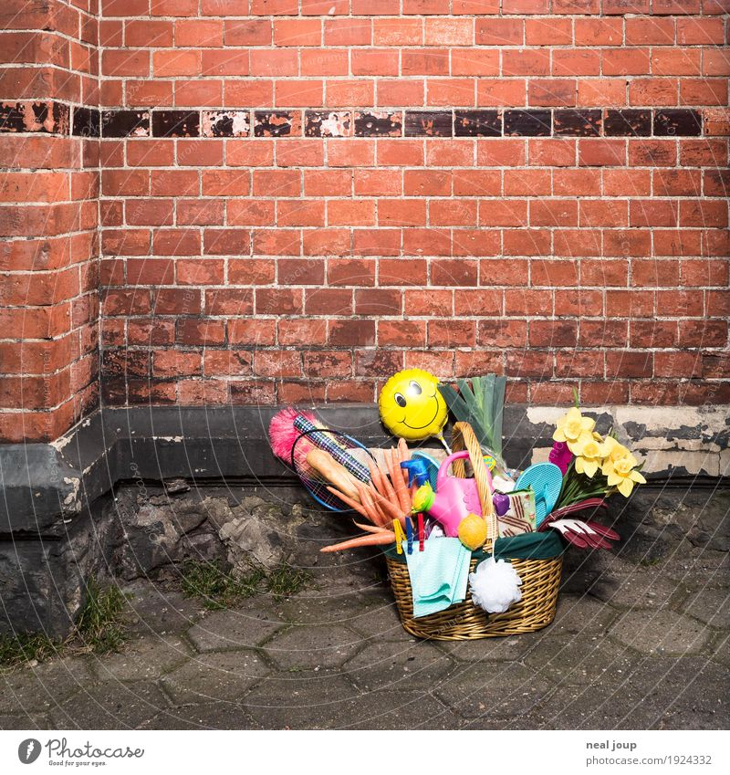 shopping Vegetable Baguette Shopping Save Wall (barrier) Wall (building) Brick Watering can Kitsch Odds and ends Shopping basket Bouquet Fresh Healthy