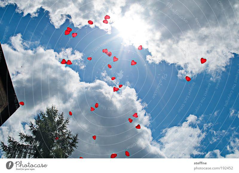 Sky Joy Clouds Love Feasts & Celebrations Beautiful weather Balloon Weather