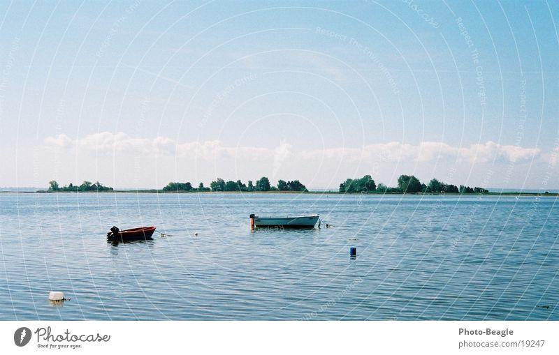 Water Beach Calm Loneliness Lake Watercraft Europe Peace Baltic Sea Seagull Black-headed gull  Fehmarn