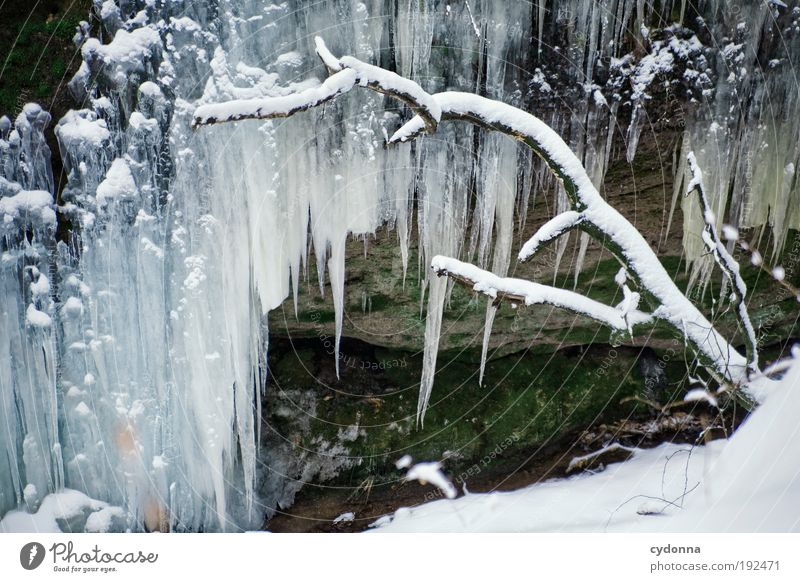 Nature Beautiful Winter Calm Life Cold Snow Dream Ice Environment Drops of water Large Time Rock Growth Frost