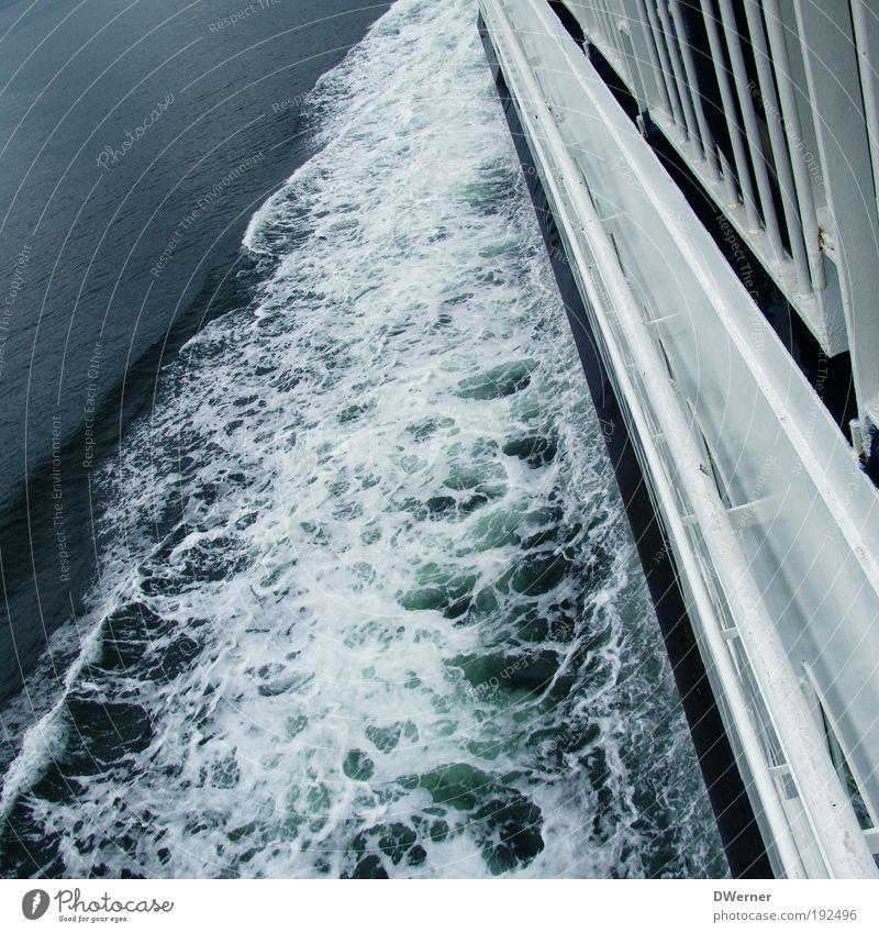 Nature White Ocean Environment Lake Watercraft Waves Wind Elegant Climate Speed Driving North Sea Baltic Sea Navigation Sailing