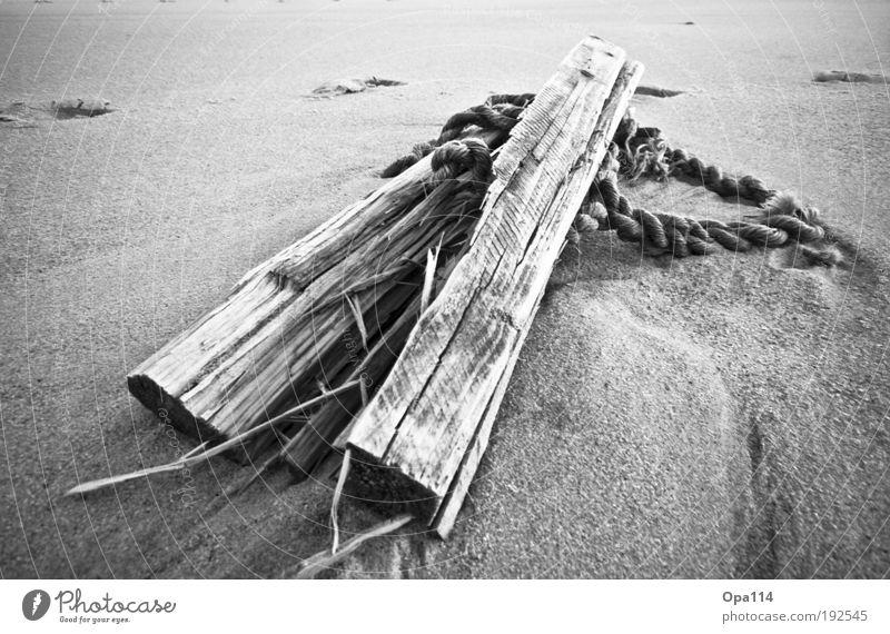 Nature White Beach Ocean Black Work and employment Wood Coast Earth Island North Sea Firm Decline Effort Aggravation Black & white photo