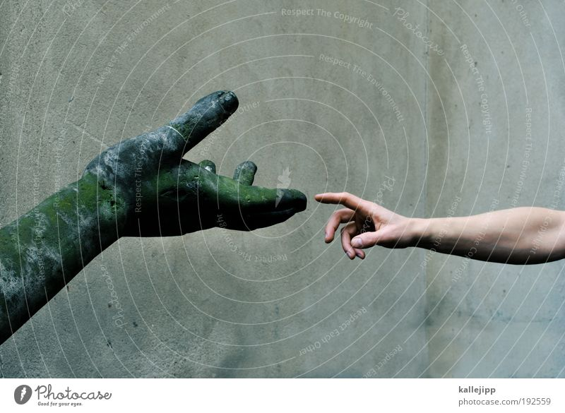 Human being Green Hand Calm Art Park Arm Skin Fingers Prayer Culture Touch Safety Trust Society Moss