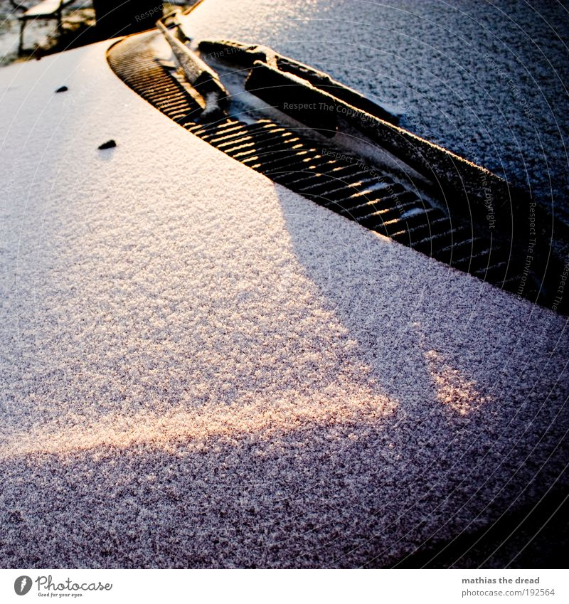Nature Winter Cold Snow Car Ice Environment Transport Cool (slang) Frost Motoring Vehicle Covered Windscreen Car Hood Snow layer