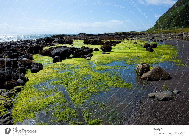low tide Vacation & Travel Tourism Far-off places Beach Ocean Island Scotland isle of gauze Nature Landscape Water Sky Plant Algae Rock Coast Bay Stone Blue