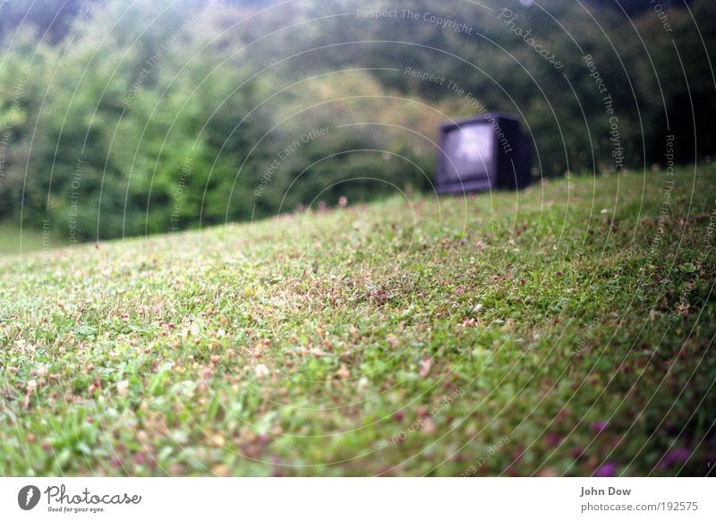 The World Cup can come TV set Beautiful weather Grass Bushes Garden Park Meadow Watching TV Green Bulk rubbish Remainder Environmental pollution Public viewing