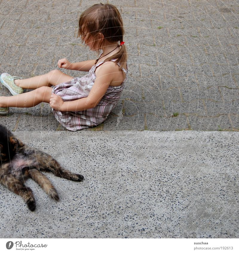 Cat Child Girl Joy Animal Life Hair and hairstyles Infancy Natural Concrete Pelt Simple Idyll Pet Human being Love of animals