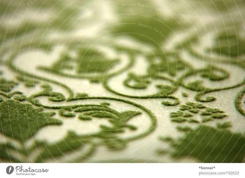 Beautiful Green Line Design Paper Retro Near Soft Decoration Thin Wild Mysterious Macro (Extreme close-up) Pattern Hip & trendy
