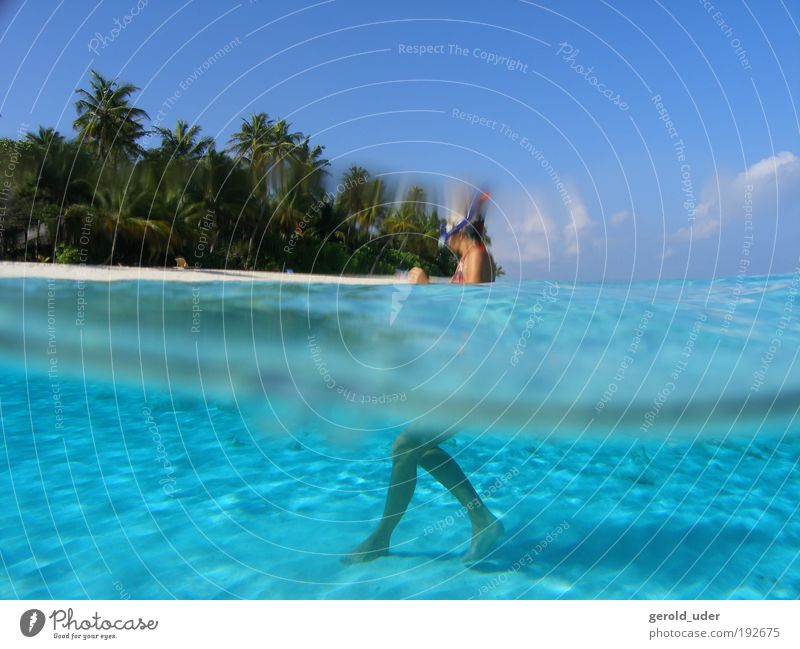 Woman in lagoon on tropical island Vacation & Travel Adventure Far-off places Freedom Summer Summer vacation Beach Ocean Island Waves Aquatics 1 Human being