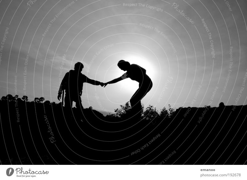 Human being Nature Hand Tree Sun Summer Vacation & Travel Love Black Freedom Couple Landscape Friendship Contentment Arm