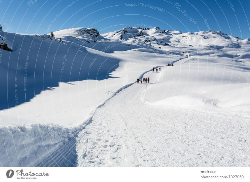 Motorway at 2000m Tourism Winter Snow Winter vacation Mountain Hiking Landscape Cloudless sky Horizon Climate Beautiful weather Rock monastic valley