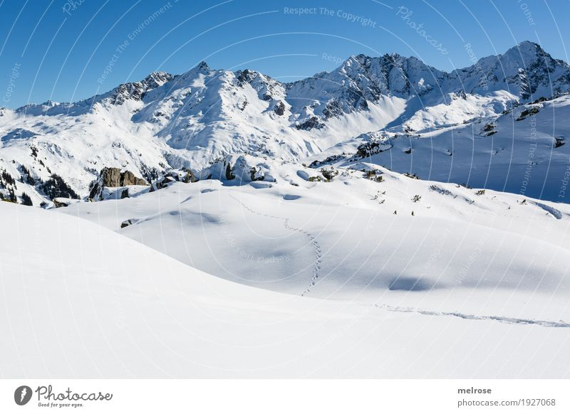 ... Tracks in the snow ... Tourism Winter Snow Winter vacation Mountain Hiking Nature Cloudless sky Beautiful weather Rock monastic valley mothersöchle sunhead