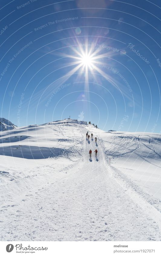 Sonnenstern - Hike Vacation & Travel Tourism Winter vacation Mountain Hiking Landscape Cloudless sky Climate Beautiful weather Ice Frost Snow Rock mothersöchle