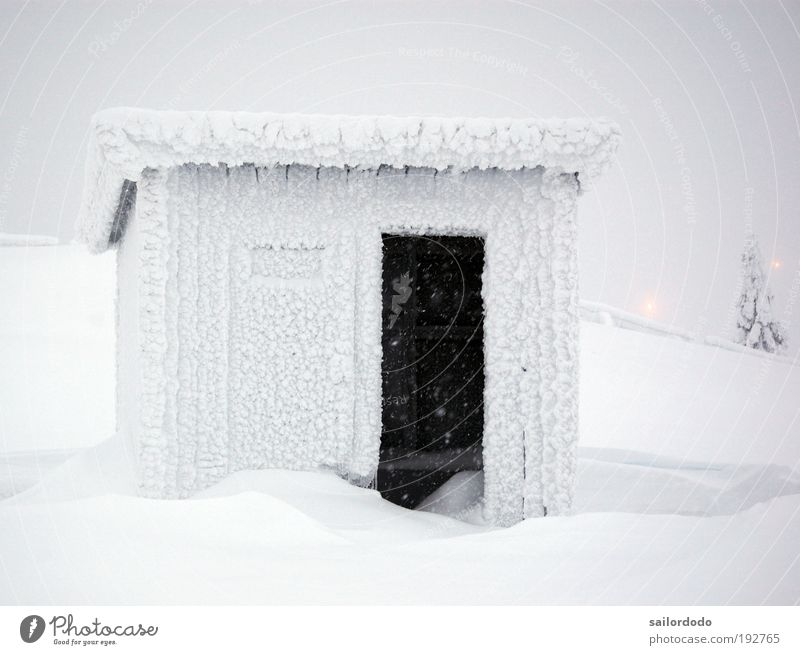 Nature White Winter Cold Environment Gray Weather Fog Ice Wait Climate Frost Hut Climate change Sweden Force of nature
