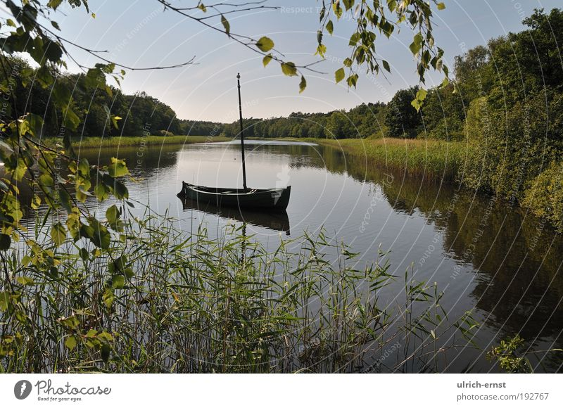 Nature Water Green Vacation & Travel Calm Relaxation Grass Dream Lake Landscape Watercraft Contentment Environment Romance Peace Sailing