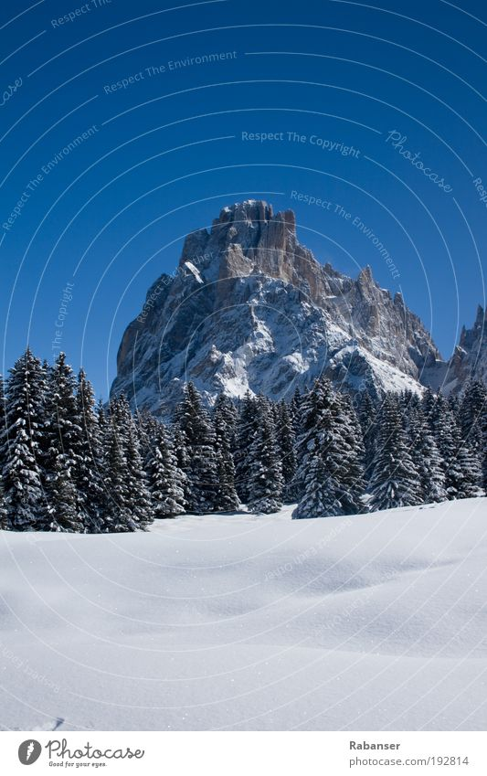 Dolomites & Mountains Environment Nature Landscape Water Sun Sunlight Winter Weather Beautiful weather Ice Frost Snow Old White cloudstress Tree Stone Sky Blue