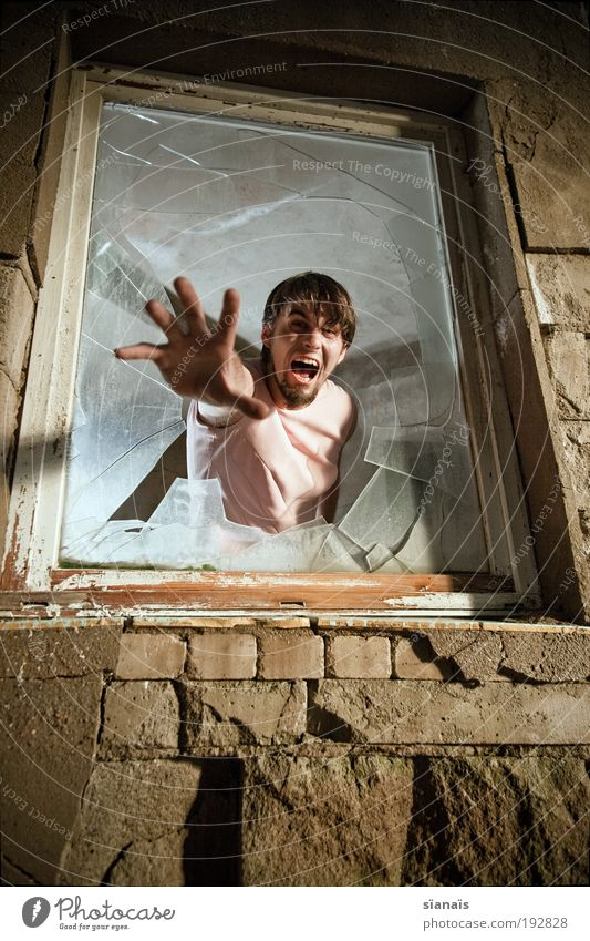 Feminine Window Fear Masculine Poverty Crazy Dangerous Illness Anger Scream Creepy Force Distress Broken Tension Fear of death
