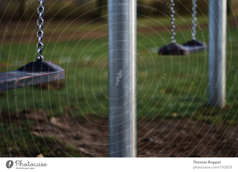 swing Joy Leisure and hobbies Playing Children's game Playground Plant Meadow Deserted Swing Swing chain To swing Colour photo Exterior shot Close-up