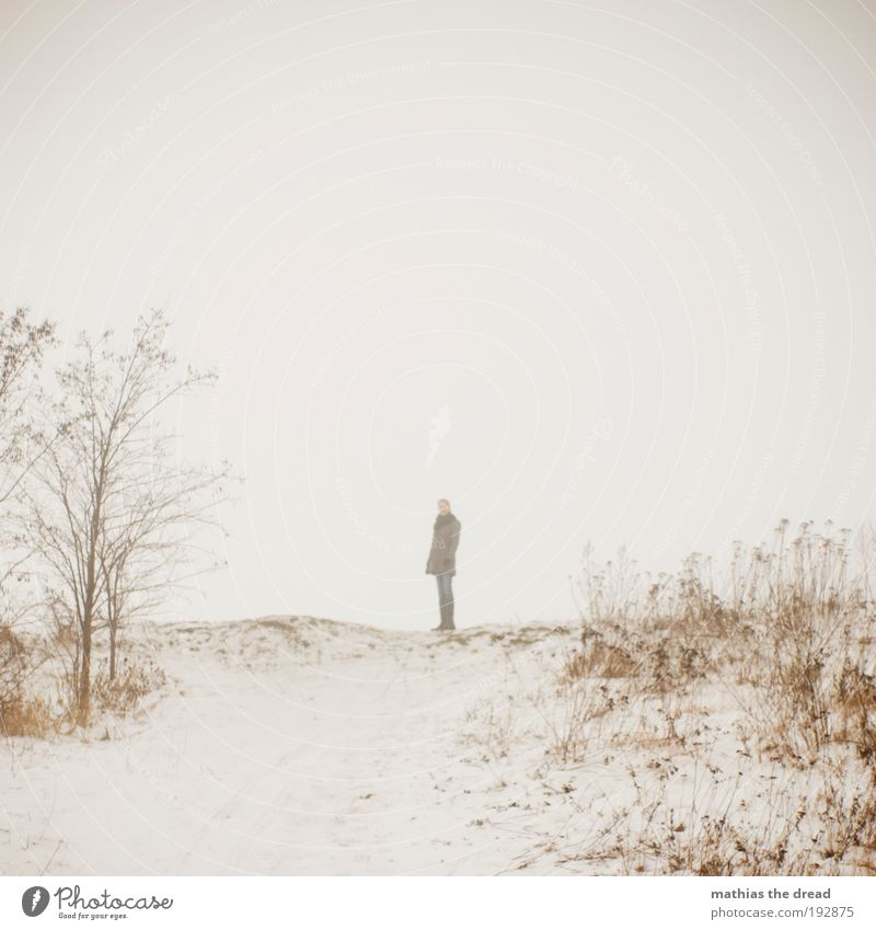Human being Sky Nature Youth (Young adults) Tree Plant Winter Loneliness Adults Environment Meadow Dark Cold Landscape Snow Horizon