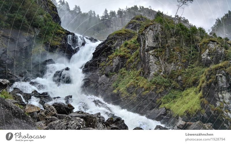 the powers that be Nature Landscape Elements Water Bad weather Tree Grass Waterfall Låtefossen To fall Esthetic Threat Authentic Fresh Wet Wild Brown Gray Green