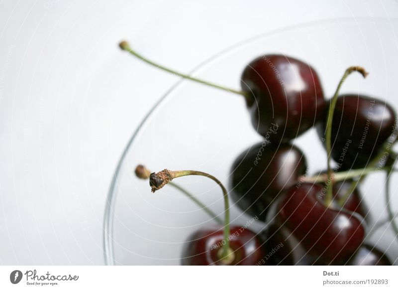 Summer break in Piedmont Food Nutrition Bowl Delicious Sweet black cherry Cherry Stalk Fresh Juicy Red Crunchy Mature Colour photo Interior shot Close-up